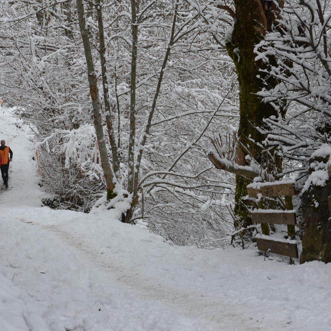 Wintertrail (2014-02,02, Julien THIERY – RAIDLIGHT) (22)